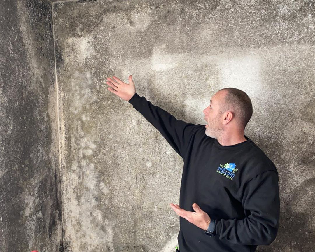 Mould Removal West London