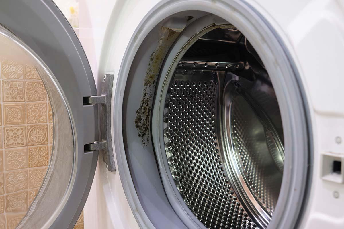 remove-black-mould-in-washing-machine